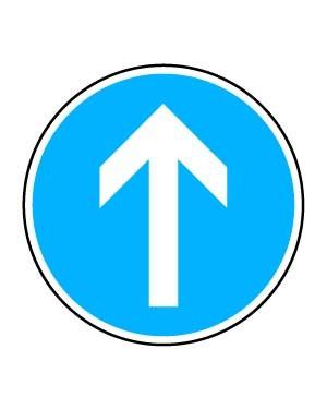 فقط مسیر مستقیم