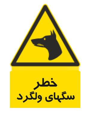 خطر سگهای ولگرد